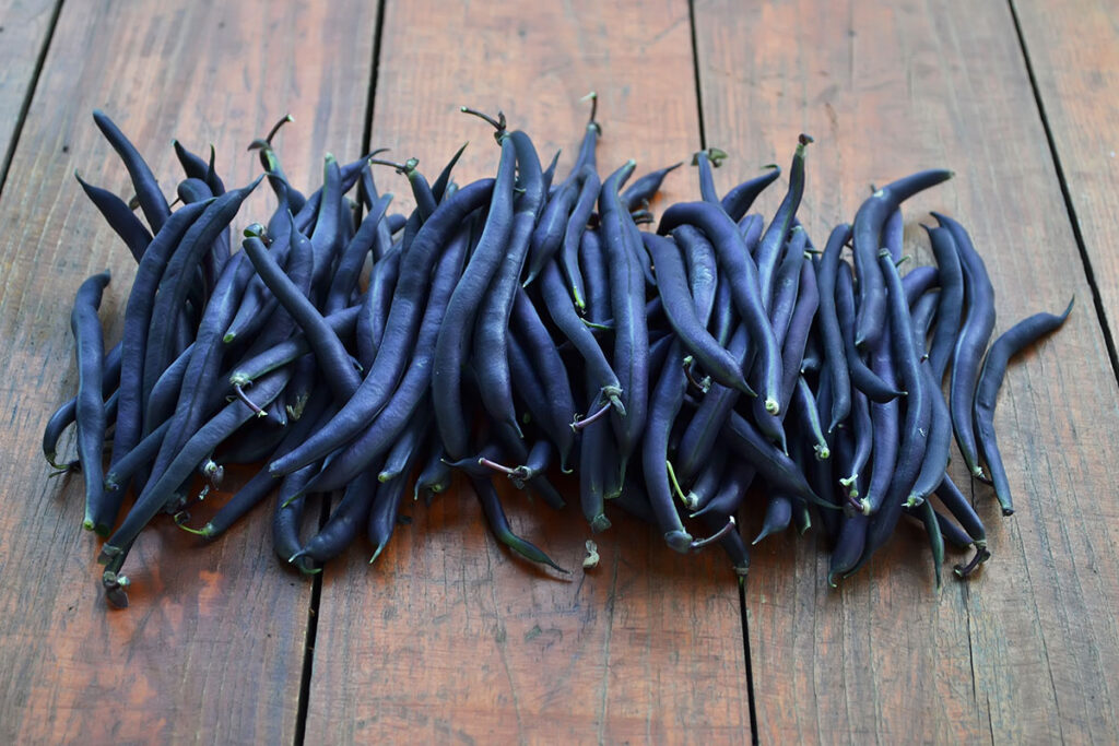 purple asparagus beans on the table